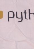 Футболка программиста — Python