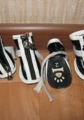 ботиночки для собачки