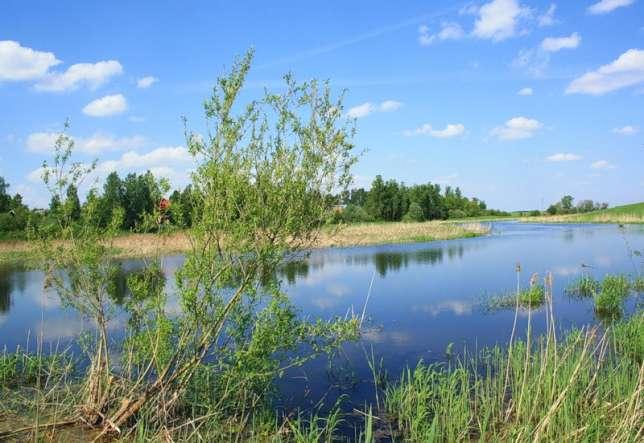 рыбалка федоровское ленинградская область