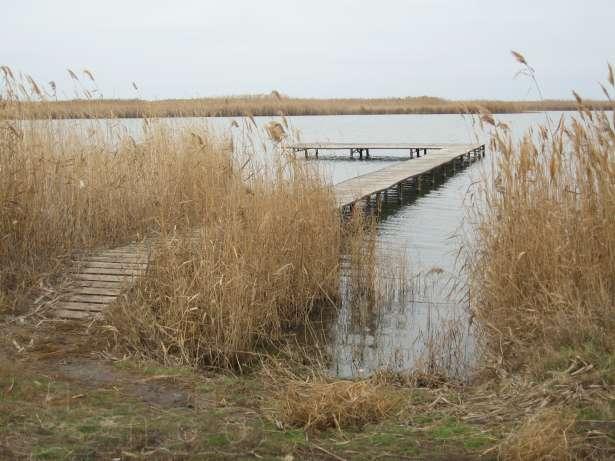 маныч веселовский район рыбалка