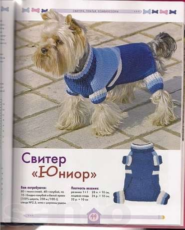 Как связать свитер для йорка своими руками схемы вязания
